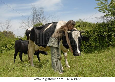 young teen and friend black and white cow with her calf poster