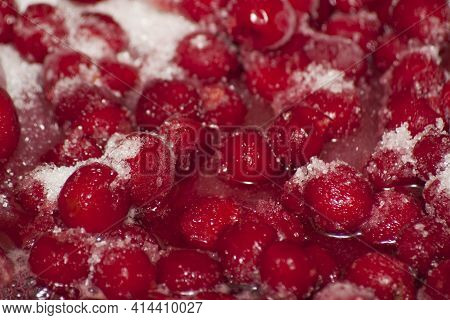 Frozen Cherries With Sugar. Frozen Ripe Cherry Berries Covered With Hoarfrost