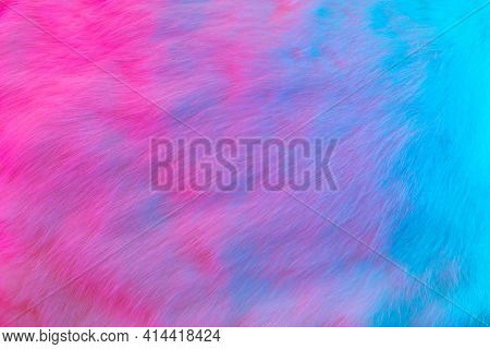 Fur Smooth Background. Colorful Fashion Luxury Fur Texture In Pink And Blue Colors. Rabbit Fluffy Sk
