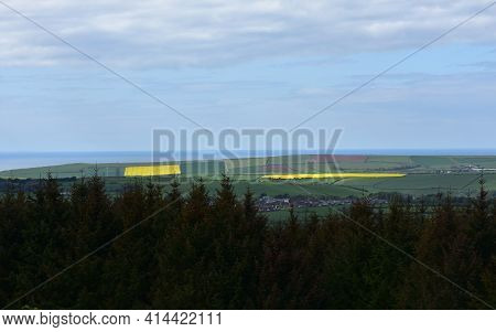 Rape Seed Fields And Pastures As Seen From Dent Hill.