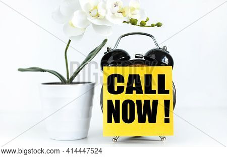 Call Now. Text On Yellow Sticker Prekpelen Alarm Clock Near Green Orchid Plant On White Background