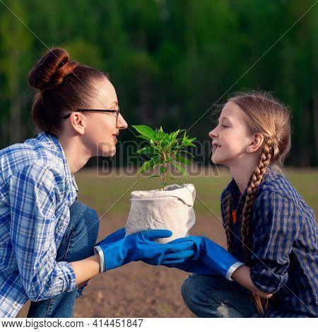 Happy Mother And Little Daughter Together Holding In Hands Small Green Plant Seedling In Pot. Parent