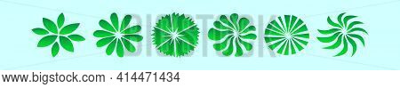 Set Of Plant Top View Cartoon Icon Design Template With Various Models. Modern Vector Illustration I