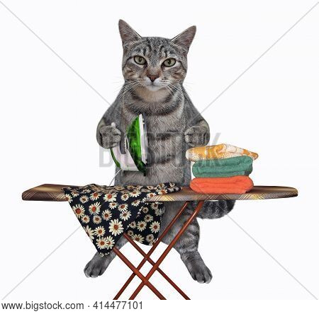 A Gray Cat Irons Clothes Using An Iron On An Ironing Board After Laundry At Home. White Background.