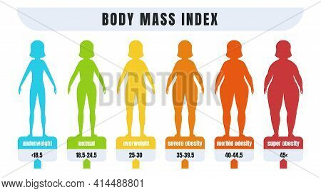 Woman Bmi. Body Mass Index Infographic For People With Obesity And Normal Weight. Diagram For Diagno