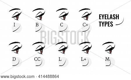 Eyelash Types. Curved Female Eyelashes Extension, Various Length And Bend. Profile View Of Woman Eye