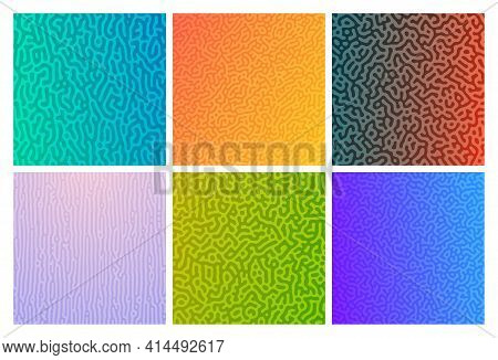 Set Of Six Colorful Turing Reaction Gradient Backgrounds. Abstract Diffusion Pattern With Chaotic Sh