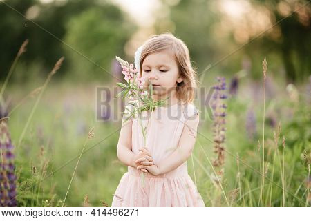Little Girl In Pink Dress In Field With Flowers. Girl With Purple Lupine Flowers. Child In Nature.
