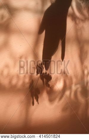 Blurred Shadow Of Female Hand Holding Twig With Leaves On Grunge Wall Background With Lace Flower Pa