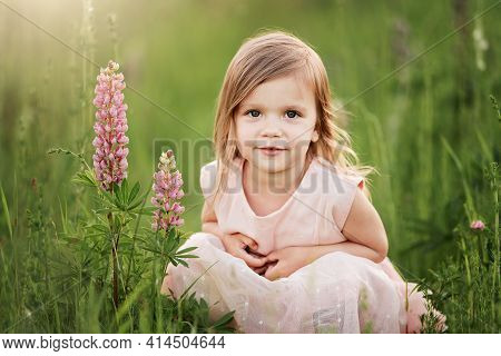 Beautiful Girl In Dress Holding A Lupine At Sunset On The Field. The Concept Of Nature And Romance.