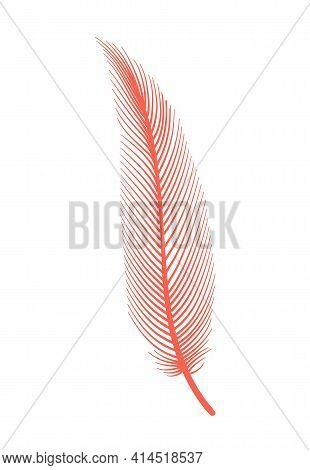 Coral Detailed Feather Of Bird. Vector Decorative Fluffy Pink Feather Of Flamingo Or Goose. Plume Ic