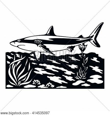 Shark, Wildlife Stencils - Silhouettes, Wildlife Clipart, Iron On, Vector, Vinyl Design.