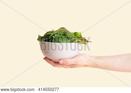 A Female Hand Holding A Bowl With Leafy Greens: Spinach, Beet, Arugula On The Yellow Background In S