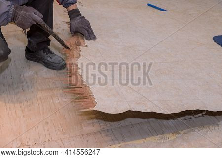 The Worker Dismantles The Over Old Linoleum Floor With House Improvement