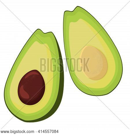 Vector Realistic Fresh Fruit Avocado Isolated On White Background. Whole And Cut In Half Avocado Wit
