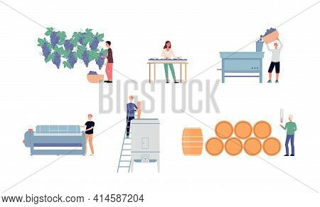 Wine Making Process On Winery, Production Of Traditional Alcohol Beverage.