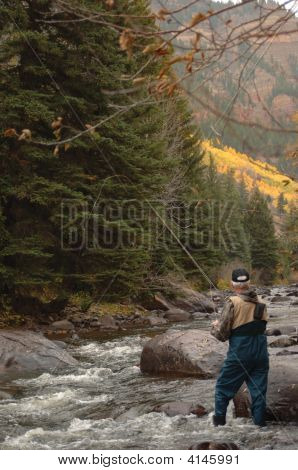 Trout Fishing Vertical