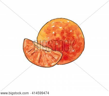 Watercolour Illustration. Tangerine And Tangerine Slice. Drawn By Hand, The Outline Is Outlined With