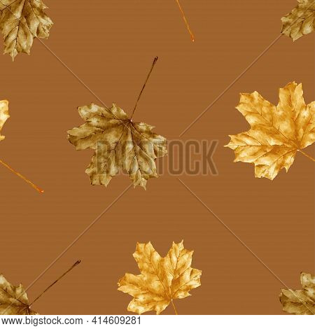 Seamless Autumn Leaves Water Colour On Brown Background, Dry Maples Leaves In Brown And Gold Colour