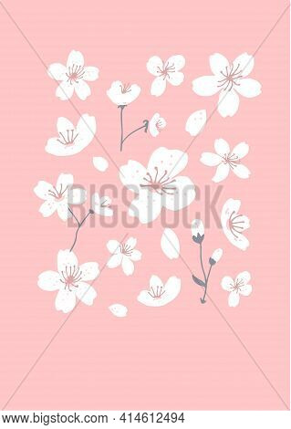 Spring Tree Blossom Art. White Flowers On Pink Background. Cherry Blossom Illustration For Greeting