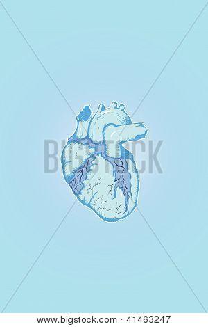 Ice Heart Human