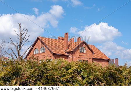 Red Brick House. Hedge Of Thuja Trees. Row Of Tall Evergreen Thuja Trees Green Hedge Fence Along Pat