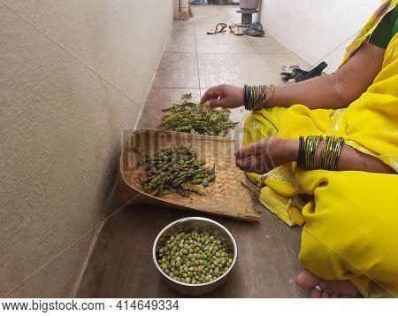 Closeup Of Indian Traditional Dress Saree Wear Women Peeling Skin Of Hyacinth Beans Or Avarekayi Out