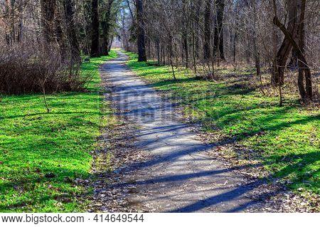 Walking Trail In The Spring Park . Asphalt Footpath In Nature