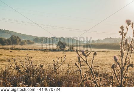 Rural Landscape Field In Rustic Style On Yellow Background. Natural Scenery. Countryside Sunny Morni