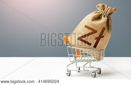 Polish Zloty Money Bag In A Shopping Cart. Business And Trade Concept. Public Budgeting. Profits And
