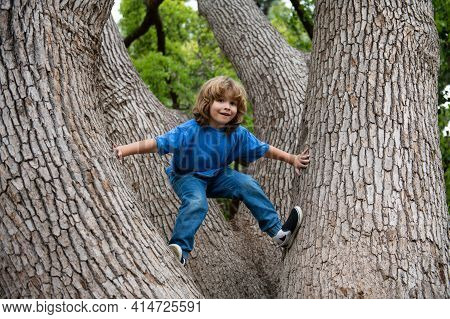 Happy Child Boy Climbing A Tree. Childhood Youth Growth