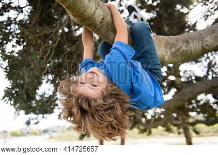 Kids Climbing Trees, Hanging Upside Down On A Tree In A Park. Child Protection