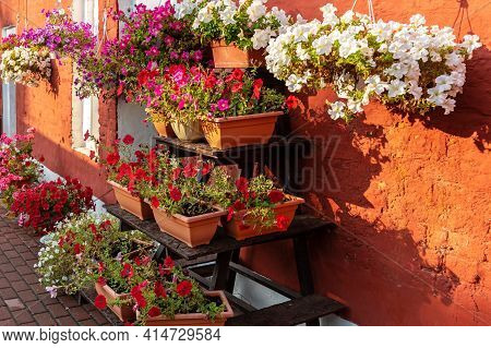 Close-up Of Medieval Street Full Of Flowers In Ceramic Pots. Blooming Colourful And Smelly Plants In