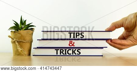 Tips And Tricks Symbol. Books With Words 'tips And Tricks'. Businessman Hand, House Plant. Beautiful
