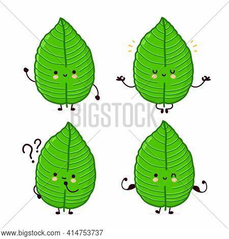 Cute Funny Kratom Leaf Character Set Collection. Vector Flat Line Cartoon Kawaii Character Illustrat