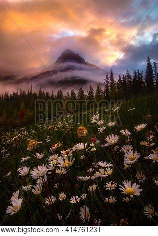 Foggy Mountain Nearby Silverhorn Campground, Banff National Park, Alberta, Canada