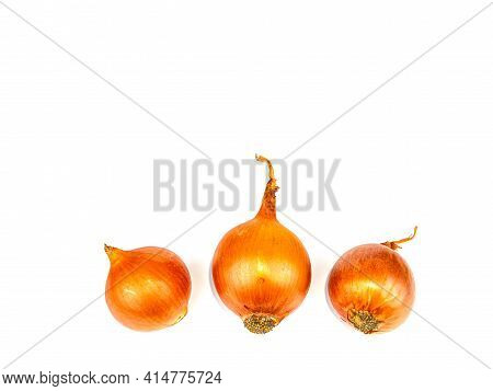 Vegetable Onion Golden Color On A White Background.