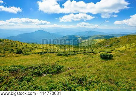 Carpathian Biosphere Reserve Mountain Ridge. Green Meadows Summer Landscape Of The Chornohirskyi Mas