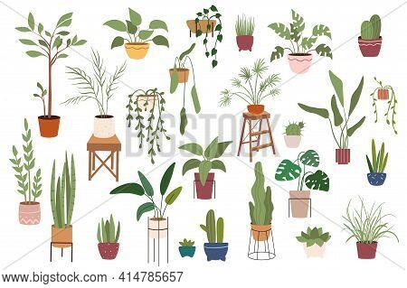 Home Plants In Pots Isolated Scenes Set. Different Houseplants Flowerpots. Green Garden For Decorati