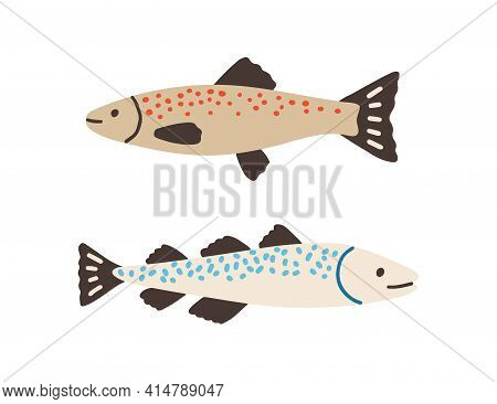 Side View Of Atlantic Spotted Fishes. Baltic Herrings Isolated On White Background. Colored Flat Vec