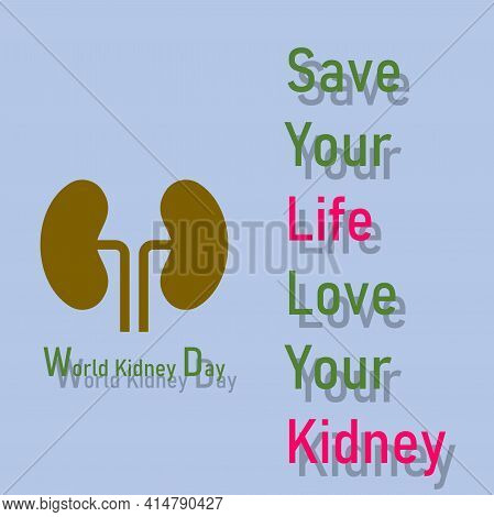 The Illustration Shows A Picture Of Kidney. There Is A Word That Is World Kidney Day. Save Your Life