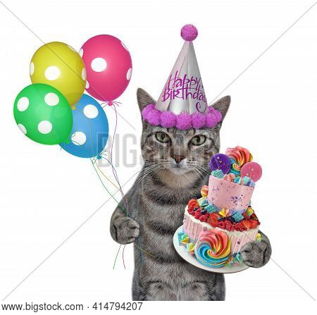 A Gray Cat In A Party Hat With A Holiday Cake And Colored Balloons Celebrates A Birthday. White Back