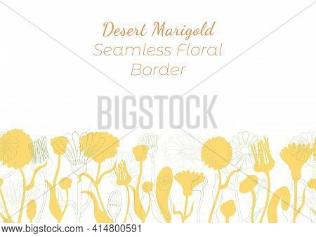 Seamless Border Made With Hand Drawn Corn Marigold Arranged Horizontally. Marigold Branches, Flowers