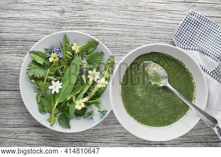 Healthy Green Soup With Fresh Spring Plants. Dandelion, Wild Garlic, Flowers And Nettle Ingredients