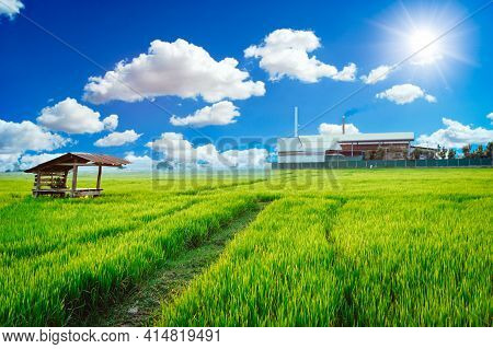 Green Factory Plant Environment Friendly Processes Living With Clean Air Green Rice Field.