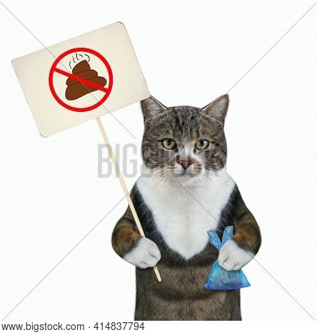 A Colored Cat Holds A Blue Plastic Bag With Poop And A Prohibition Sign That Says Clean Up After Pet