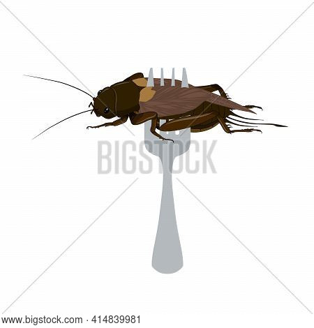 Food Insects: Crickets Insect Deep-fried Crispy For Eating As Ready Meal Food Items On Fork, It Is G