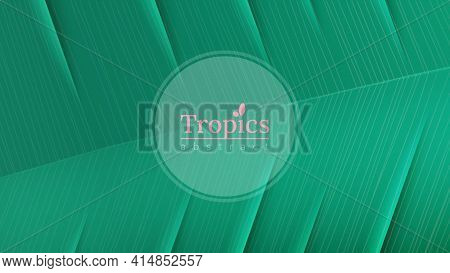 Floral Nature Green Leaf Macro Vector Background. Tropical Banner Template