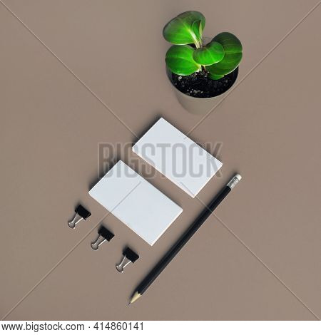 Blank Stationery And Plant. Branding Mock Up. Template For Branding Design.