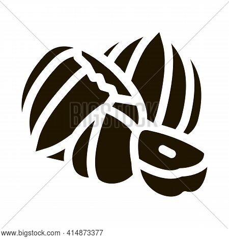 Hazelnut Nut Glyph Icon Vector. Hazelnut Nut Sign. Isolated Symbol Illustration